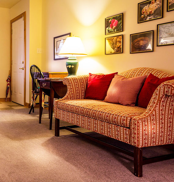 Sofa protection is key for preserving the good condition of your couch.