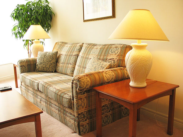 The sofa is the centerpiece of the living room.