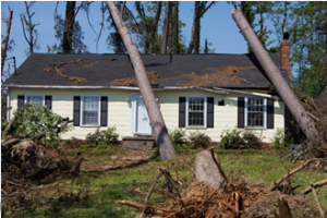 How to Save Money and Time During Disaster Restoration