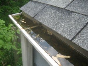 clogged gutters