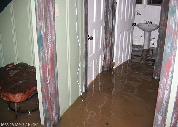 Water damage can compromise the structural integrity of a home and pose health threats to the occupants.