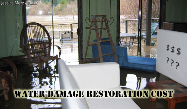 The actual water damage restoration cost for every individual project depends on a number of factors.