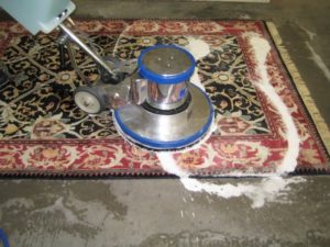 How to Remove Mold & Mildew Odors from Carpeting