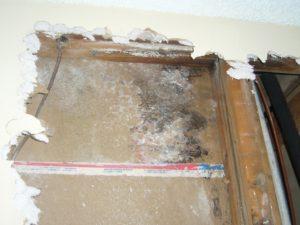 hidden black mold inside a broken out wall